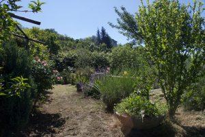 Il Giardino di Ilaria